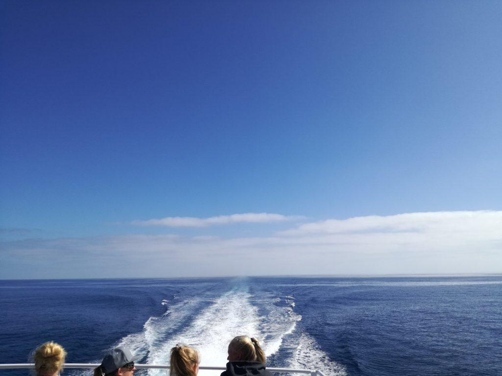 Meraviglioso l'oceano intorno a noi sul Catalina Flyer verso l'isola di Santa Catalina