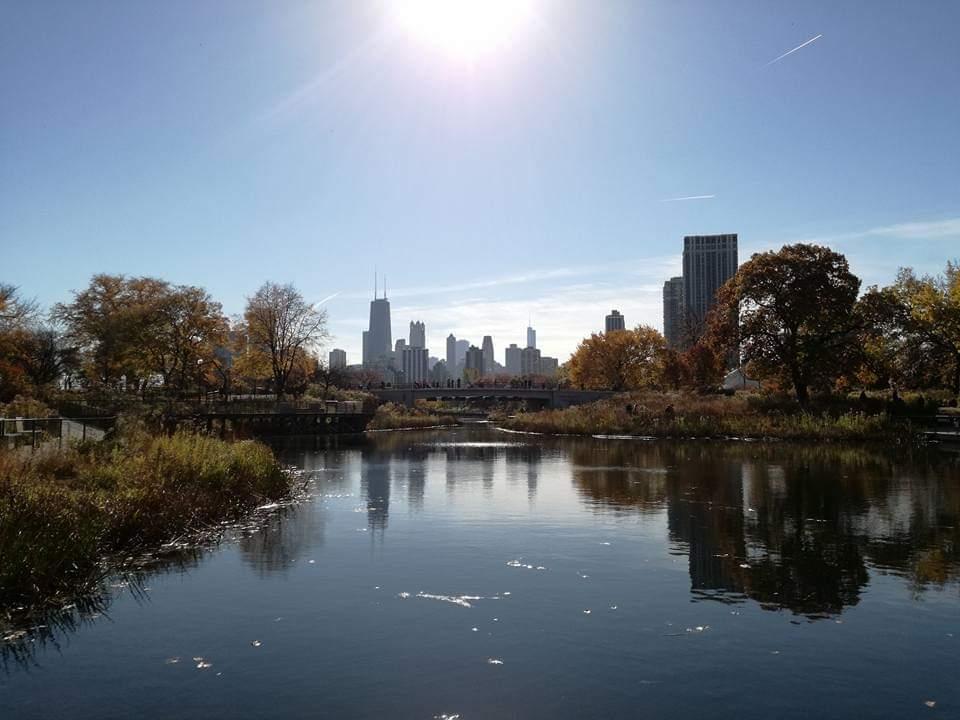 Lincoln Park - attrazioni Chicago