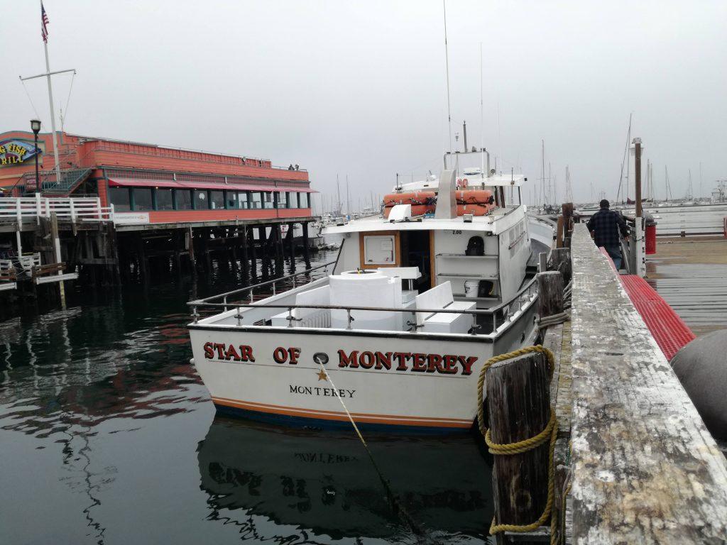 Star of Monterey per avvistamento balene