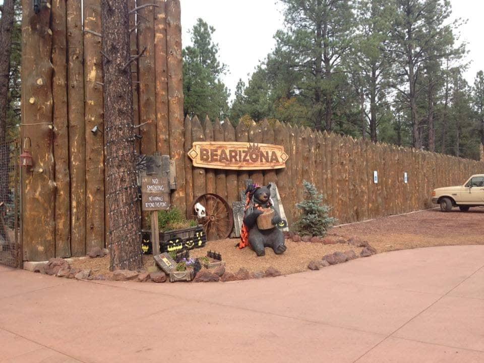 ingresso a Fort Bearizona visita Williams Arizona