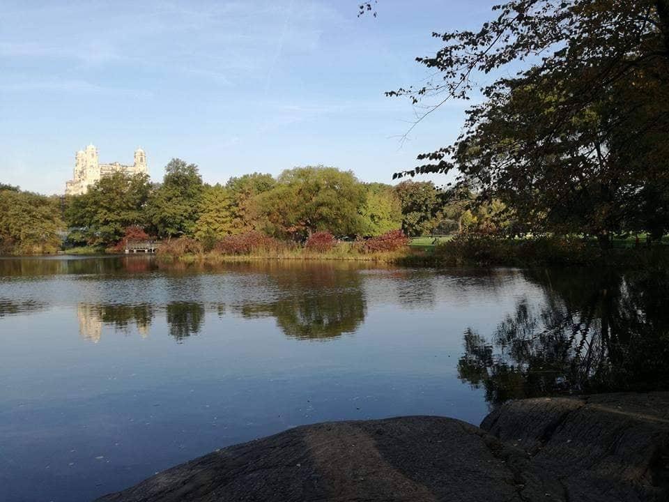 Visita a Central Park - Manhattan