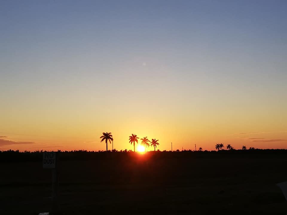 cosa fare a Homestead Miami tramonto sulle piantagioni e sulle Everglades