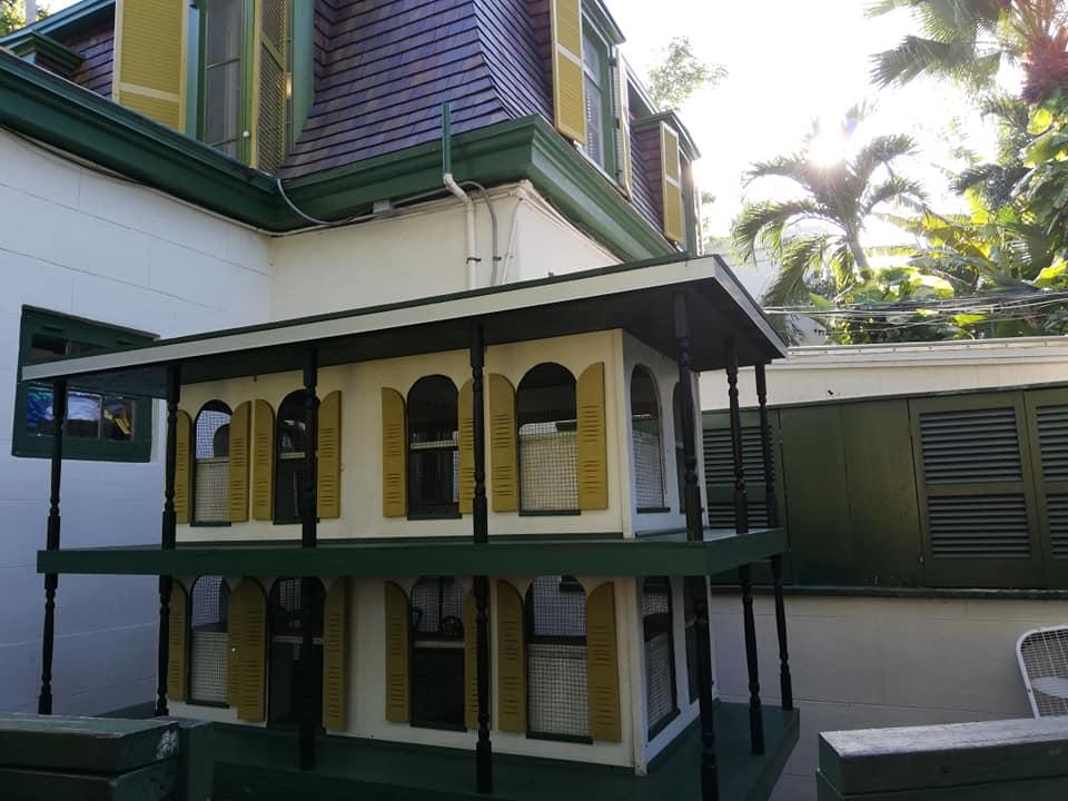 Casetta dei gatti polidattili e non nel retro della casa di Hemingway a Key West