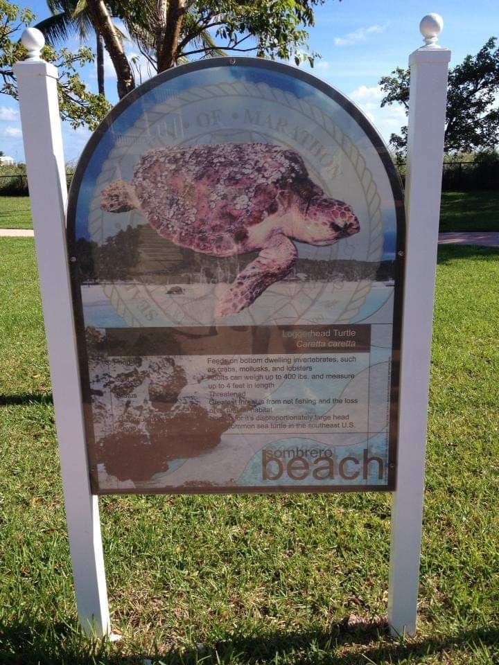 cosa vedere a Marathon Florida Keys Sombrero Beach