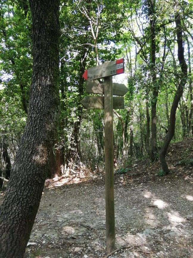 Deviazione per Pian Grande - Sentiero 301 A Monte Conero