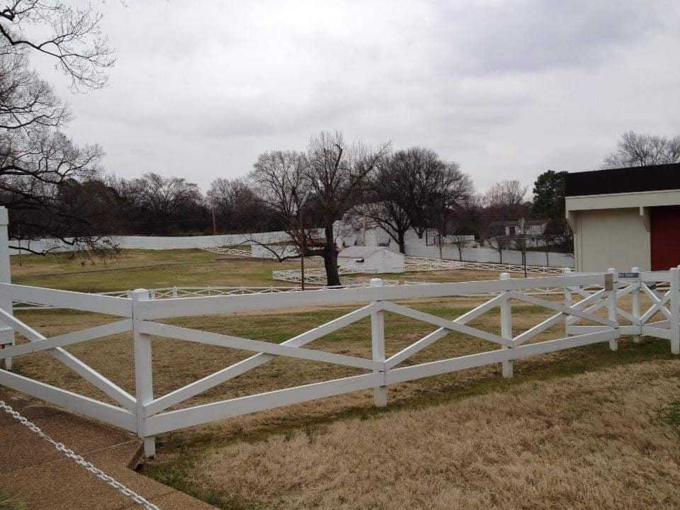 Visitare Graceland a Memphis - Il Maneggio