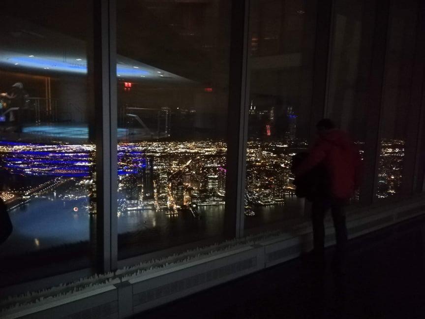 visitare la Freedom Tower dome incantato ad osservare il panorama
