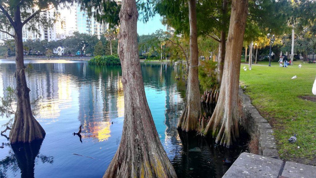 Visita ad Orlando e Lake Eola Park - Il nostro arrivo al lago