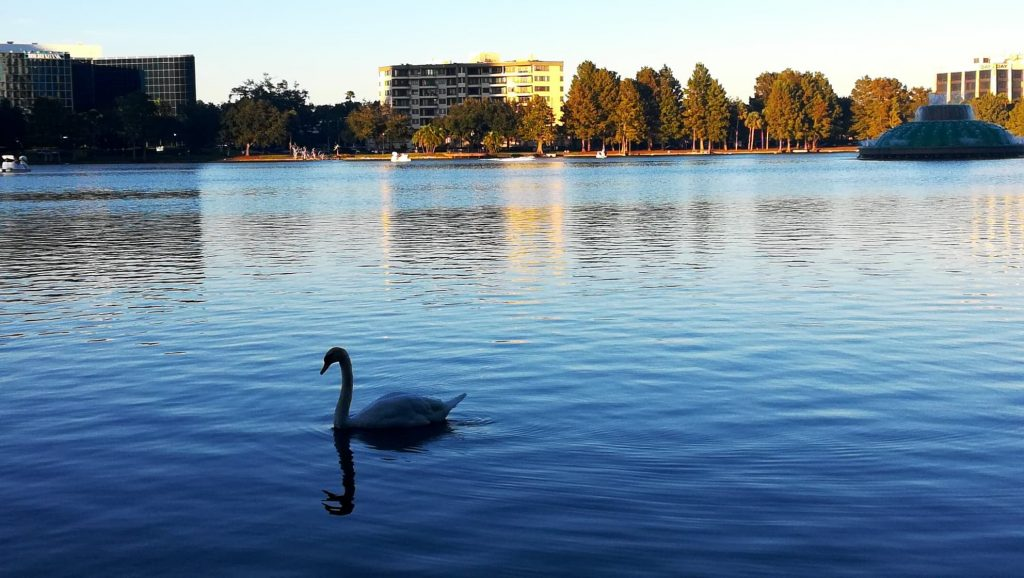 Visita ad Orlando e Lake Eola Park - Uno scatto al tramonto