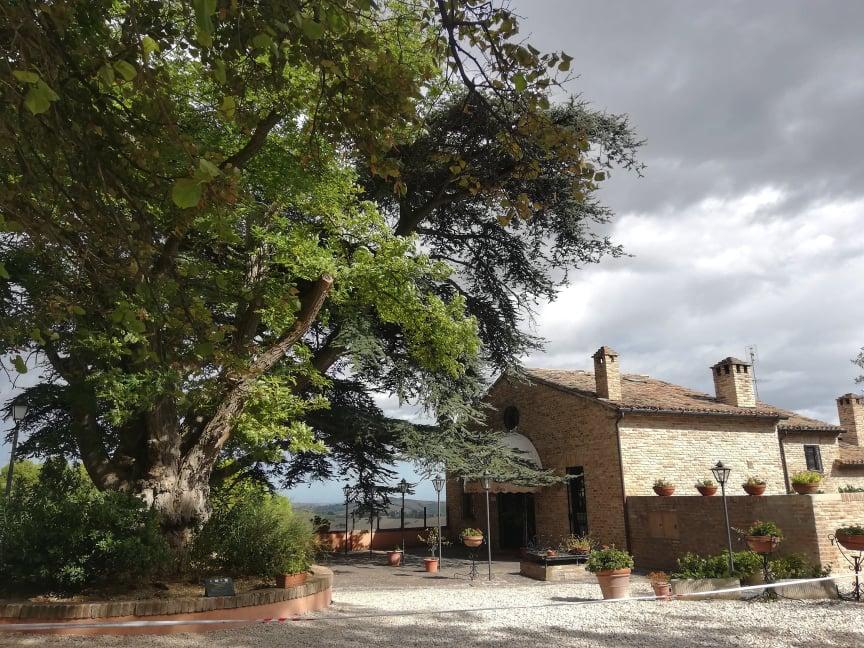 Cosa vedere a Mondavio - Ristorante il giardino e terrazza panoramica