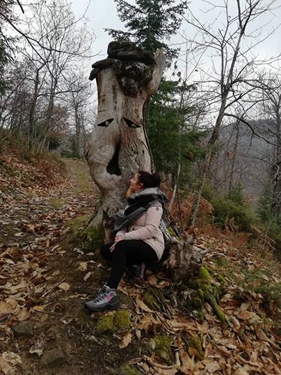 sentiero armonia sculture legno Raggiolo l'albero che sembra stia parlando con il ciuffo di riccioli neri