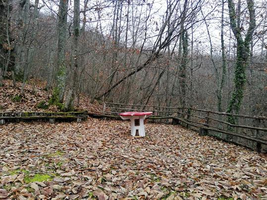 sentiero armonia sculture legno Raggiolo tavolino a forma di funghetto velenoso
