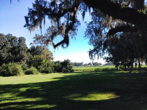 Evergreen Plantation - tour delle piantagioni di canna da zucchero in Louisiana