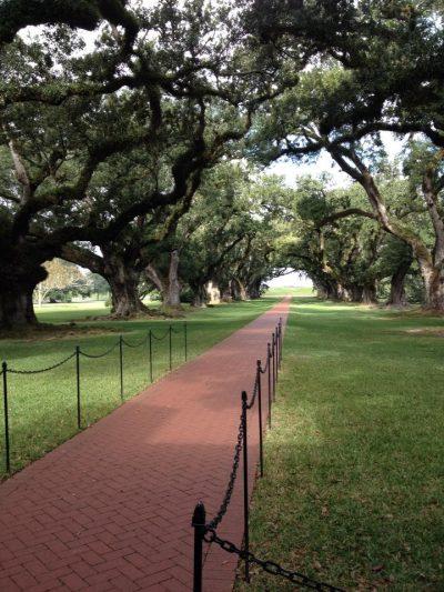 Viale di fronte alla Oak Alley Plantation tour delle piantagioni in Louisiana - visitato insieme alla Evergreen Plantation
