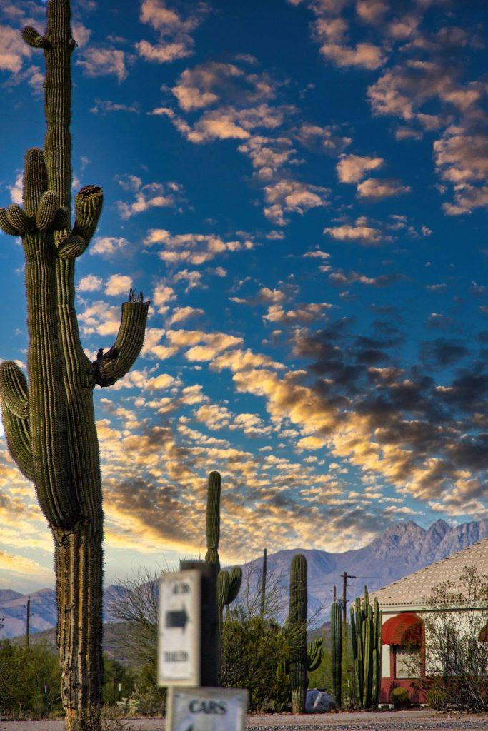 Paesaggi dell'Arizona - ©5socci di Monica Socci - intervista Usa Friends di Usalavaligia