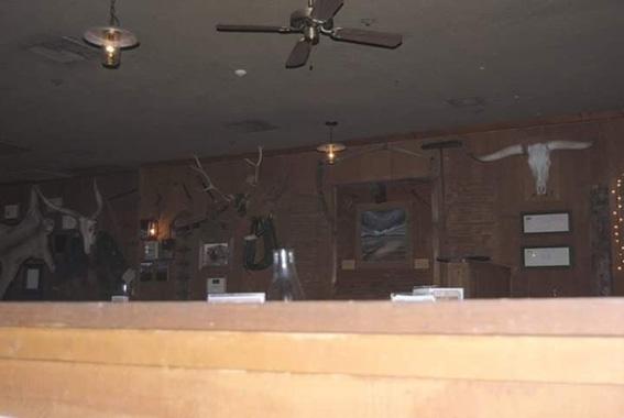 mangiare serpente a sonagli Usa Arizona dettagli alle pareti