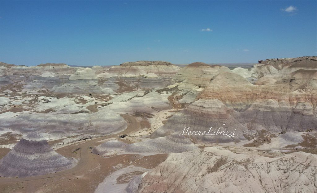 Petrified Forest Blue Mesa Trail - ©Morena Librizzi intervista per Usa la Valigia