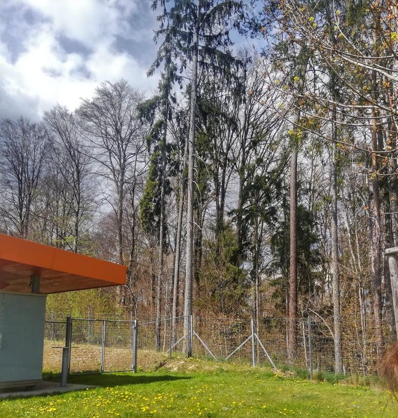 Rest Area in cui ho fatto il mio primo picnic all'aria aperta post lockdown durante il mio viaggio internazionale