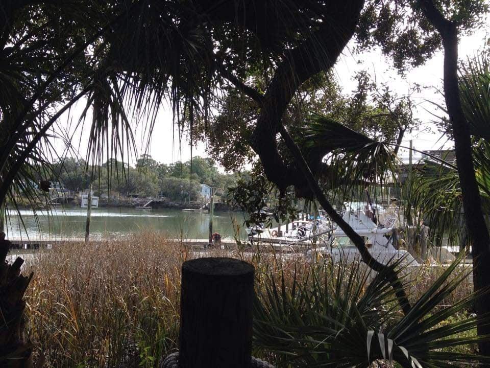 Vista sulla laguna dal ristorante esterno The Crab Shack - Tybee Island miglior ristorante pesce Tybee Island